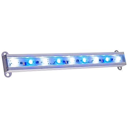 Aqua Euro Led Lights