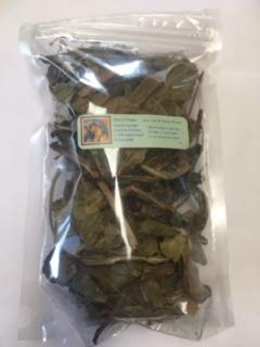 (Ravenz Roost Deer's Tongue Leaf ~ Dried herb ~ 1 oz Bag - Small to Large Pieces Dried Herbs)