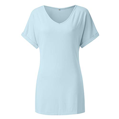 Answerl Womens V-Neck Tunic Top Loose Fit T Shirt Casual Basic Solid Daily Comfortable Blouse Shirt Tee Light Blue