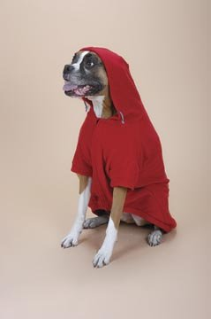 POOCH+PLUS™ All-star Fleece Jacket with Hood, Color Red, Size Extra Small
