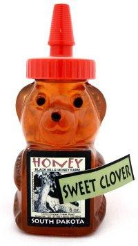 Raw Sweet Clover Honey Bear 6 Oz. (Pack of 4)