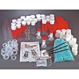 Nasco's BioQuest Culture Kit - Flies Not Included - SA06357