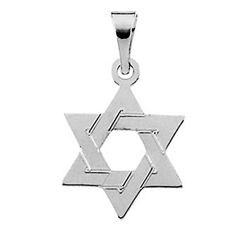 (LooptyHoops 14K Gold Star of David Charm Pendant (25mm - White Gold))