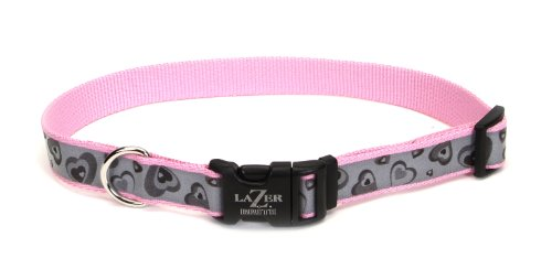 Lazer Brite Reflective Adjustable Collar, 5/8