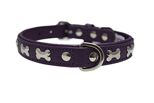 "Leather ""Bones"" Dog Collar, Padded, Double-Ply, Riveted Settings, 18"" x 3/4"", Purple, Leather (Rotterdam Bones) Neck Size: 12.5"" - 16"""