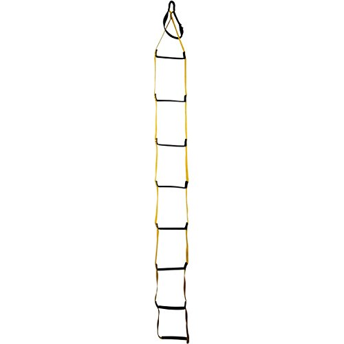 (Metolius 8-Step Ladder Aider with 1