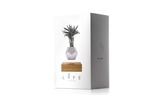 LYFE - Original, Authentic Floating Levitating Plant Pot for Air Plants (Oak Base, 12-Sided Geodesic Silicon Planter)