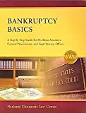 Bankruptcy Basics : A Step-By-Step Guide for Pro Bono Attorneys, General Practitioners, and Legal Services Offices, Nclc and Rao, John, 1602480095
