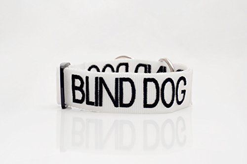 Blind Dog White color Coded Alert Warning S-M L-XL Buckle Dog Collars (S-M Collar 10-17Lx1W)
