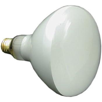 Amazon Com Pentair 79107600 300 Watt 120 Volt Bulb