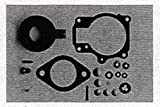 Johnson Evinrude Outboard Carburetor Kit 0396701