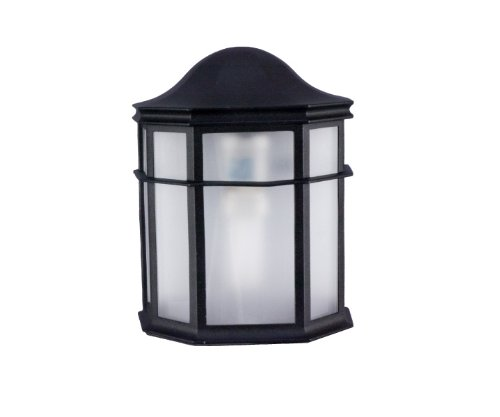 (Sunpark 3-4082PG-05 Outdoor 1-light Wall Mount Light Fixture with Frosted Shade)