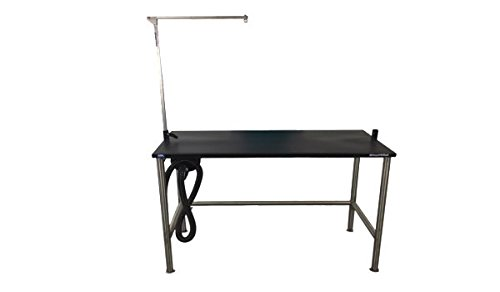 Groomer's Best GB48SST 48 in. Stainless Steel Stationary Grooming Table with Arm 18 in. ()