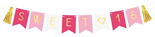 Sterling James Co. Sweet 16 Birthday Banner - Sweet Sixteen Decorations, Party Favors, Supplies, Gifts, Themes and Ideas - Milestone Happy Birthday Decorations -