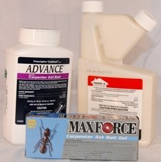 Carpenter Ant Control Kit with Termidor KIT1034 by epestsolutions