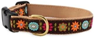"""product image for Up Country Bella Flora 1"""" Wide Dog Collar- Large 15""""-21"""""""