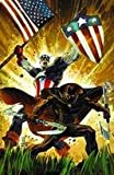 Captain America / Black Panther: Flags of Our Fathers #1