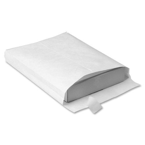 Plain End Envelopes Expansion White (Wholesale CASE of 2 - Quality Park Tyvek Plain Expansion Envelopes-Tyvek Open-End Envelope,Plain,12