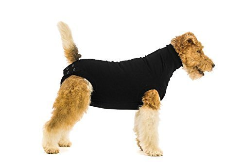 Suitical Recovery Suit for Dogs - Black - Size Medium+ (Plus)