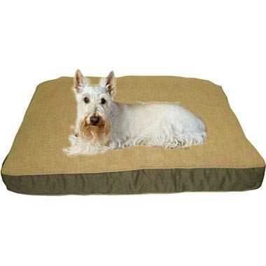Carolina Pet 012110 Four Season Poly Fill Jamison Pet Bed with Cashmere Berber Top & Contrast Cording - Sage with Khaki Cord44; Large