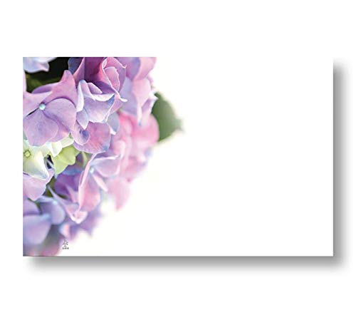 Hydrangea Spring Floral Enclosure Cards, Pack of 50 ()