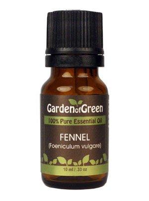 Фенхель эфирное масло (100% чистые и натуральные, Лечебно-Grade) из сада Green