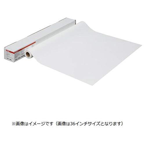 キヤノン LFM-WRM/A0/115 耐水ポスター合成紙(マット) B01HR1OVDQ