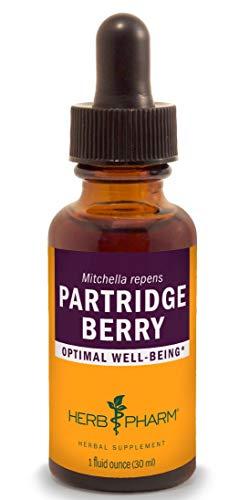(Herb Pharm Partridge Berry (Squaw Vine) Liquid Extract - 1 Ounce)