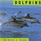 Dolphins (Animals)