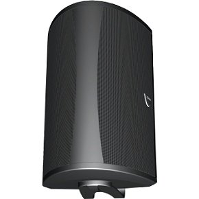 - Definitive Technology AW 6500 Outdoor Speaker (Single, Black)