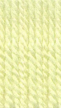 Plymouth (1-Pack) Encore Worsted Yarn Green 0450-1P ()