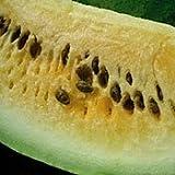 Organic Golden Honey Watermelon - 35 Seeds