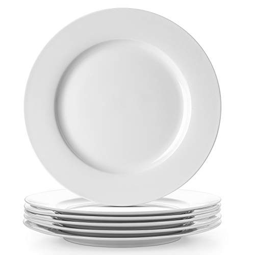 DOWAN New Bone China Dinner Plates, Light Weight Serving Platters, White, 10 Inches, Set of 6