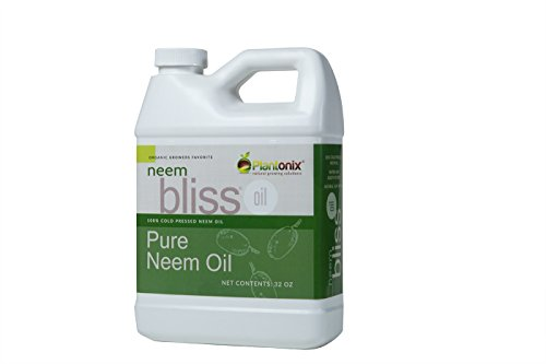 Organic Neem Bliss 100% Pure Cold Pressed Neem Seed Oil 32 oz - High Azadirachtin Content - for Indoor and Outdoor Plant Spray - Plant Care, Pet Care, Skin Care, (32 Ounce Fertilizer)