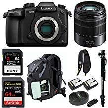 Panasonic GH5 Lumix 4K Mirrorless Camera w/ 45-150mm Lens & 64GB SD Card Bundle (Panasonic Touchscreen Camera)