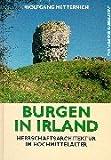 Burgen in Irland. Herrschaftsarchitektur im Hochmittelalter