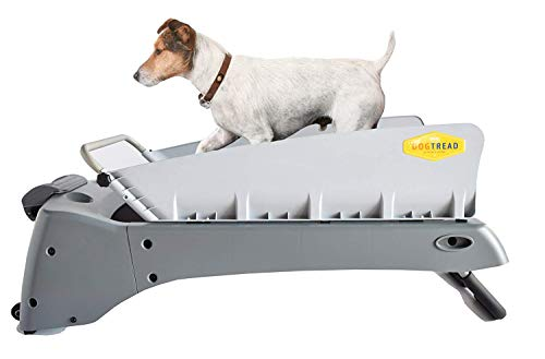 PetZen DogTread Dog Treadmill, Up to 30-Pounds, Small