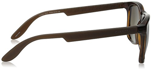Sonnenbrille Brown 5025 S amp; Brown CARRERA Havana Carrera Gradient qSFT7wS