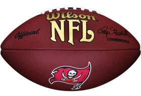 NFL Team Logo Composite Football, Official - Tampa Bay Buccaneers