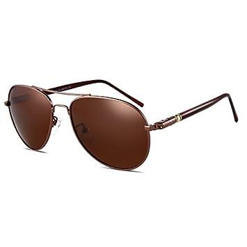 LLZTYJ Gafas De Sol/Gafas De Sol Positivas Male Polarizer ...