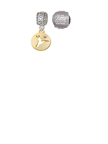 Gold Tone Hummingbird Disc Mom Charm Bead with You Are More Loved Bead (Set of (Mom Disc Charm)