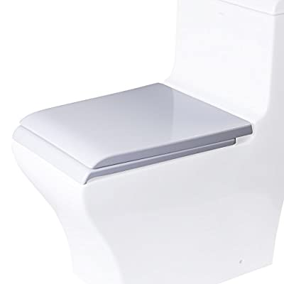 EAGO R R-356SEAT Replacement Soft Closing Toilet Seat for TB356