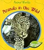 Animals in the Wild, Sue Barraclough, 1410919013