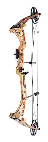 Buy intermediate compound bow