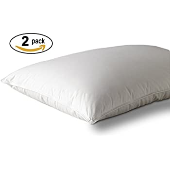Amazon Com Westin Hotel Feather Amp Down Pillow King