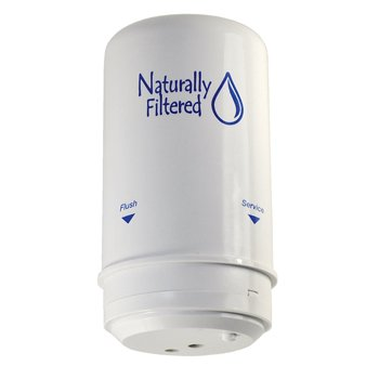 (Naturally Filtered Shower Filter Cartridge (Compatible with Wellness Filter))