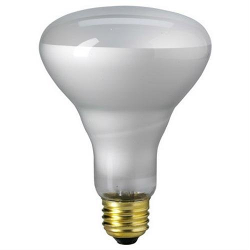 Br 25 Flood Light Bulbs in Florida - 4