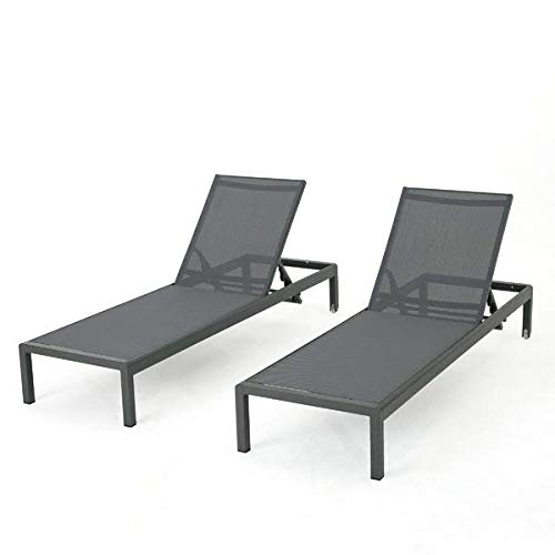 Brayden Studio 2 Pieces Gray Aluminum Mesh Reclining Chaise Lounge with Wheels + Free Basic Design Concepts Expert Guide from Brayden Studio
