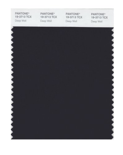 Pantone 19-3713 TCX Smart Color Swatch Card, Deep Well