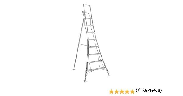 Henchman PAIO300 Escalera de trípode, 3.0m (10ft): Amazon.es: Bricolaje y herramientas